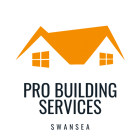 cropped-Pro-Building-Services-1.png